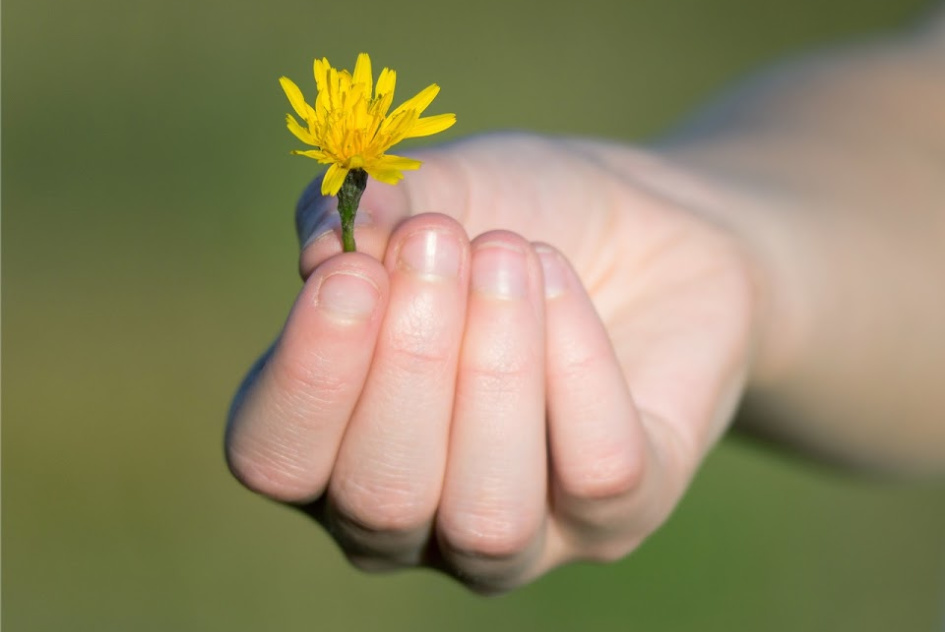 ► Give Kindness Back